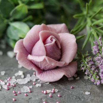 Роза Пандора