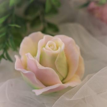 Роза Одри
