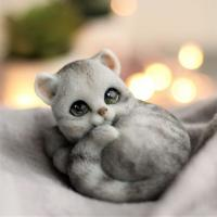 Кошечка Шарлотка